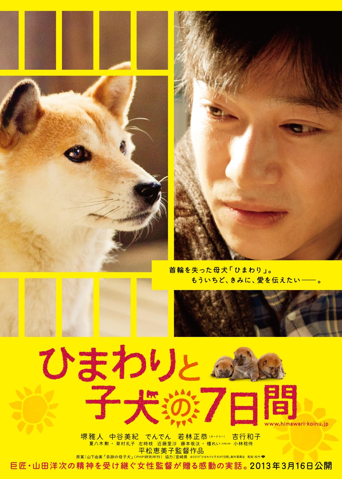 7 Days of Himawari & Her Puppies (2013)