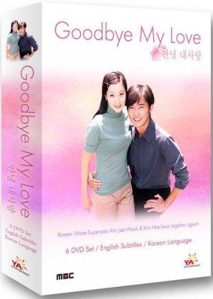Goodbye My Love (1999)